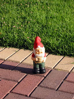 The mysterious gnome