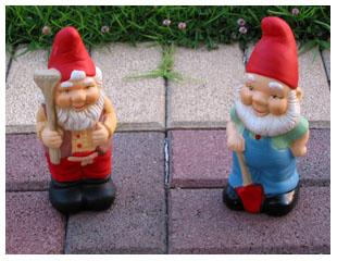 2 gnomes now!